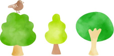 3つの木と鳥